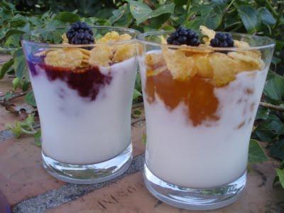 Ethna invitada al desayuno.  Yogurt-casero-4-006