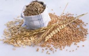 Arroz integral y cereales