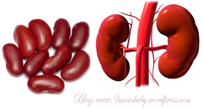 riñones y frejoles cl